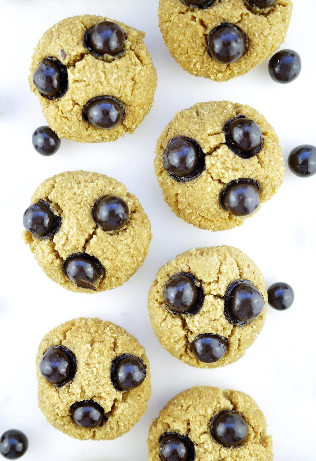 Lebby Snacks Dark Chocolate Covered Chickpeas